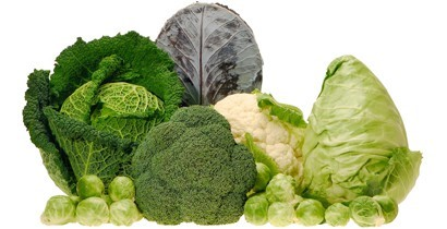 Foods That Fight Colon Cancer Norton Healthcare Louisville Ky